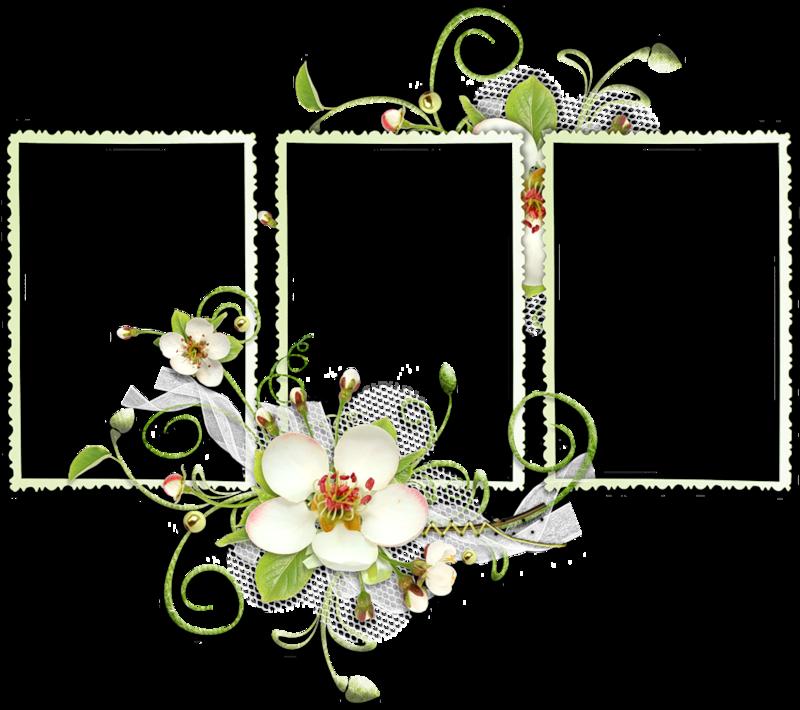 Cadres Frame Marco Quatro Rahmen Fleurs