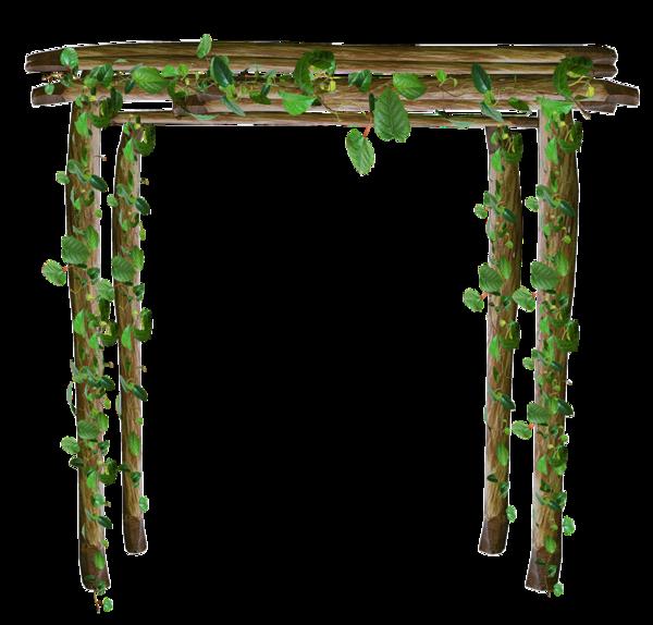 pergola en bois - feuilles - vertes - gif