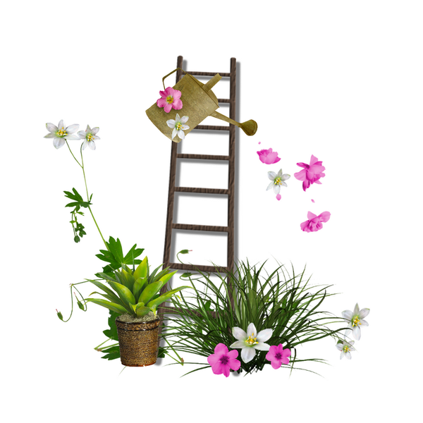 jardinage clotures arrosoirs outils page 5. Black Bedroom Furniture Sets. Home Design Ideas