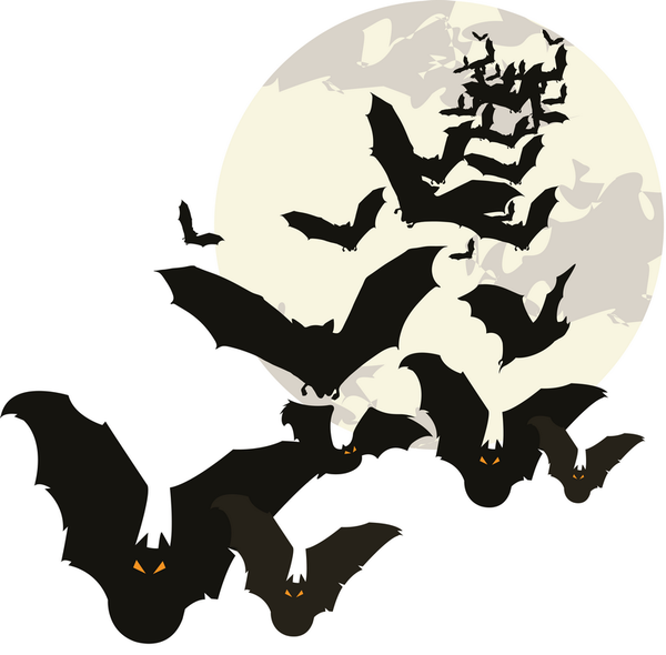 Halloween gifs fonds ecran images page 11 for Chauve souris d halloween