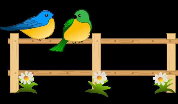 decoration oiseaux - tube oiseaux sur une barrière