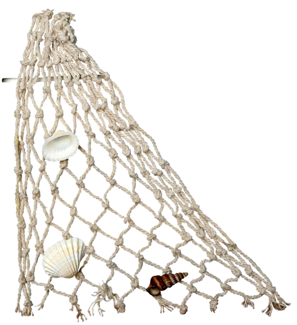 filet de pêche - red de pesca - fishing net - png