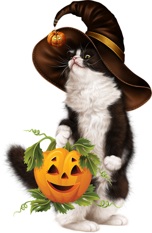 Halloween gifs fonds ecran images - Manga femme chat ...